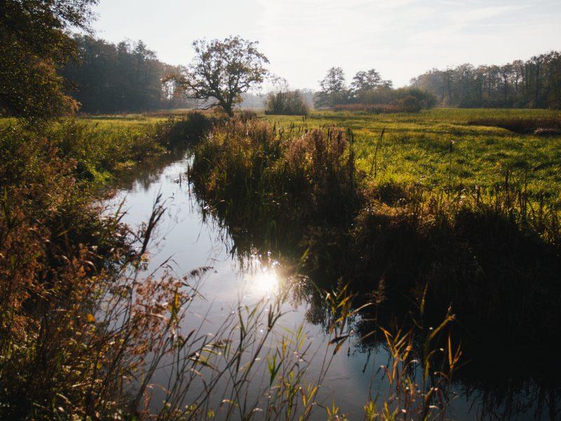 Avontuurlijke fotografie cursussen en workshops in Groningen, Drenthe & Friesland